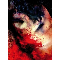 Carrie - Edición limitada Gift