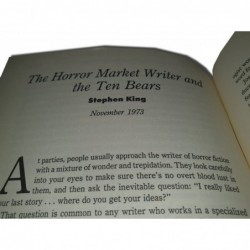 Guide to good writing - Incluye The 10 bears...
